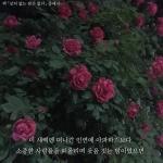 alswn0401-사진리뷰