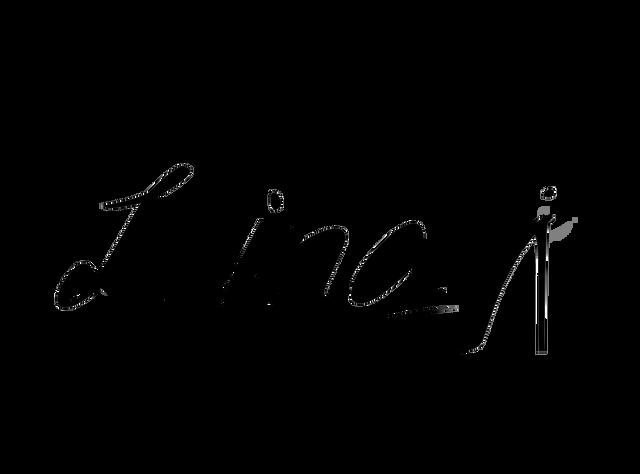 리나제이슈즈-프로필
